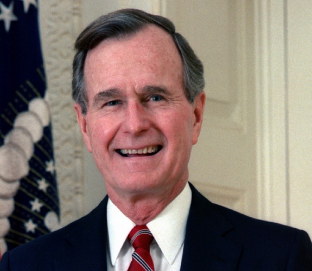 The Bush Dynasty and the bin Ladens