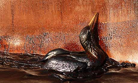 Just Like 9/11? Oil Spill Responders Are Getting Sick … but are Told They Don't Need Safety Gear