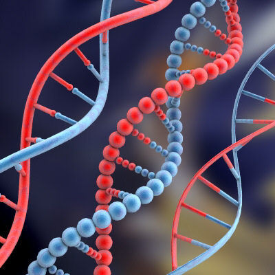 The Human Genome and Intelligence: Just What is The Economist Hinting at?