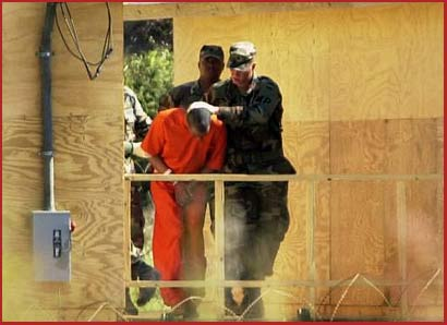Center for Constitutional Rights Endorses Report on Bush Admin. Human Experiments on Men in CIA Detention