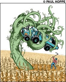 "Monsanto Asks Competitors for Help Killing ""Superweeds"""