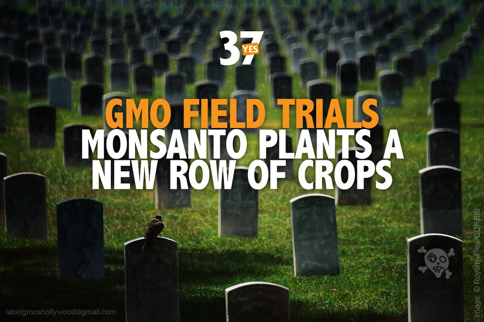 Monsanto, DuPont & PepsiCo Ad Blitz Drains Support for California GMO-Labeling Plan