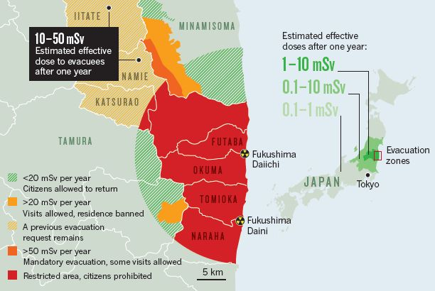 German Physician Says WHO Downplayed Health Effects of Nuclear Crisis on Fukushima Residents