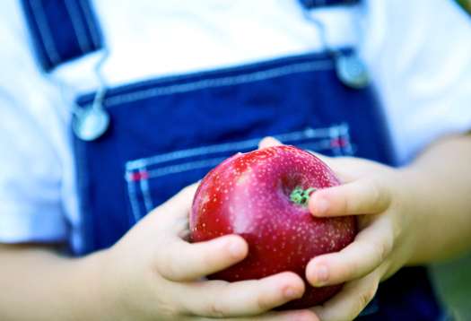 Kids may Risk Cancer from Toxins in Food: UC Davis Study