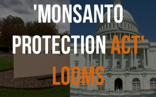 What is the 'Monsanto Protection Act'?