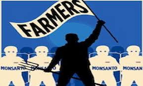 Organic Farmers Lose Court Battle with Monsanto