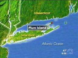 The Deadly Secrets of Plum Island