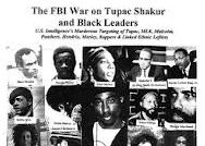 How the FBI Conspired to Destroy the Black Panther Party