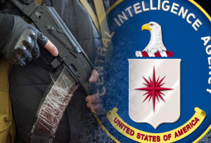 CIA And FBI Are Reportedly Advising Ukraine/Video: Captured CIA Agent was Helping Protesters